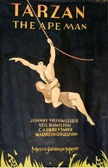 Picture of Poster Tarzan  3m x 2m