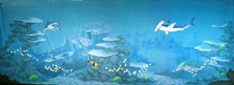 Picture of Backdrop Underwater Fantasy: Sunken Galleon 18m x 6m