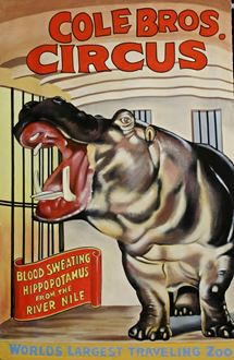 Picture of Poster Coles Bros Circus 3m x 2m