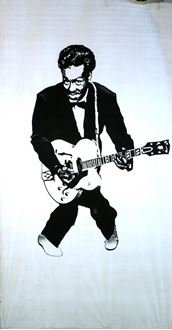 Picture of Banner Chuck Berry 6m x 3m