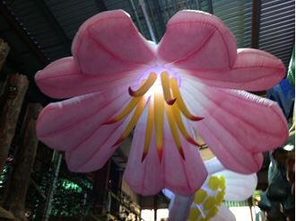 Picture of Inflatable Flower Pink 3m Wide