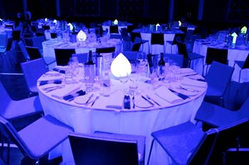 Picture of LED Teardrop Centrepiece