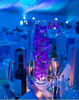 Picture of Centrepiece - Orchid in Bullet Vase on LED Light Base