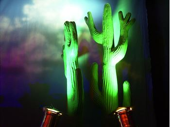 Picture of Cactus (3D)