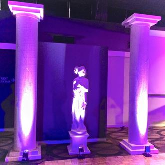 Picture of Columns - 3.3m H