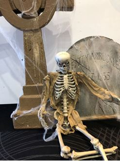 Picture of Skeletons