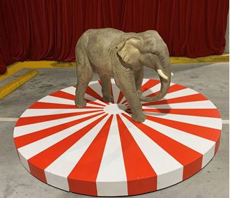 Picture of Circus Themed stage 2.4m round