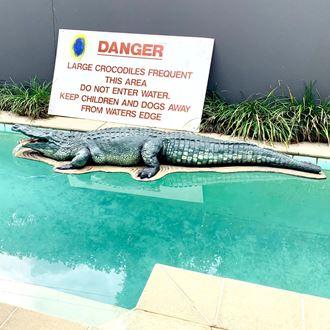 Picture of Crocodile - fibreglass