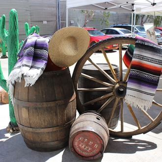 Picture of Mexican Blankets